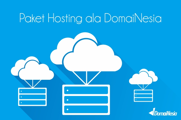 paket hosting ala domainesia