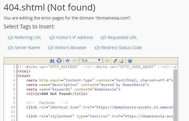 custom error page