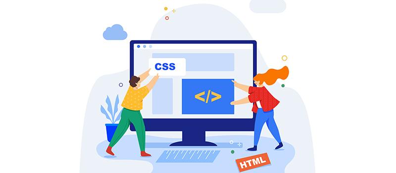 Web developer adalah